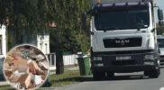 Obavijest o odvozu kućnog otpada na Božić, 25. 12. 2020.
